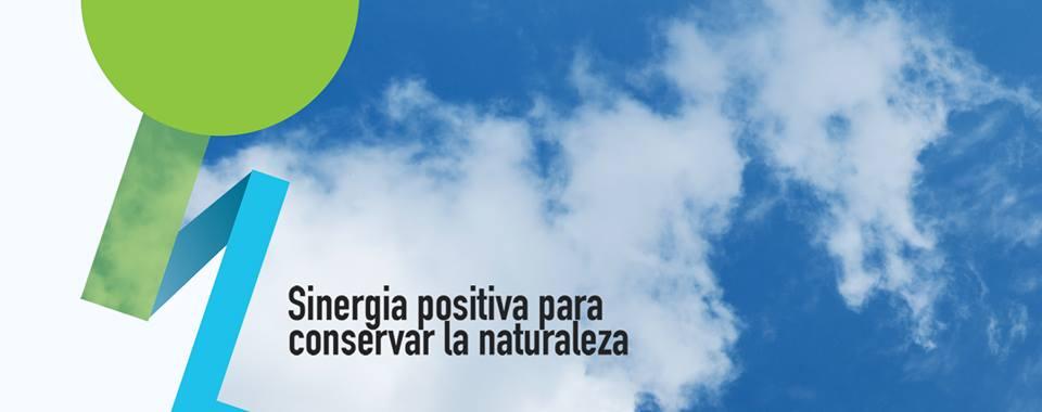 Red Acción Ambiente Perú
